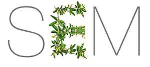 SEM-logo